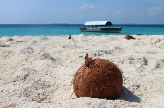 Circuito Zanzibar : C ext. zanzibar archives planet travel circuitos e pacotes de